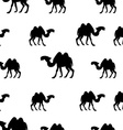Camel seamless pattern vector image