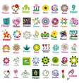 large collection of floral logos vector image