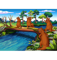 Four wild animals at the riverside vector image vector image
