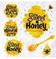 Watercolors symbols honey vector image