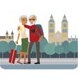 Happy senior couple travelling vector image