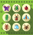 A set of colorful flat insect bug icons vector image