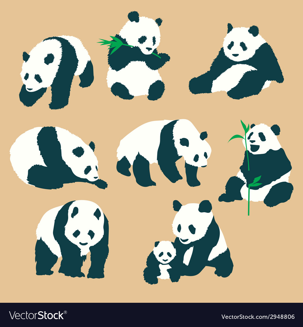 Set of cute panda bears with different actions vec vector