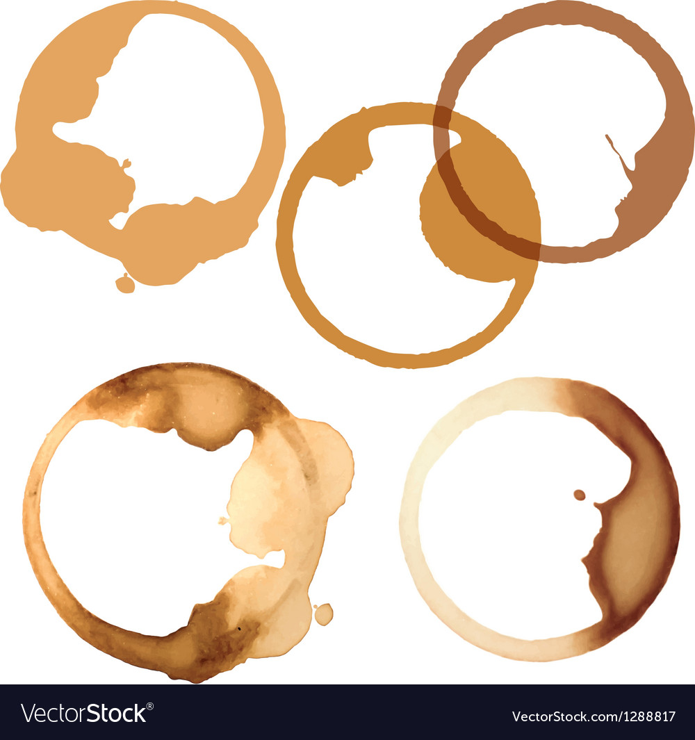 Stains of coffee vector
