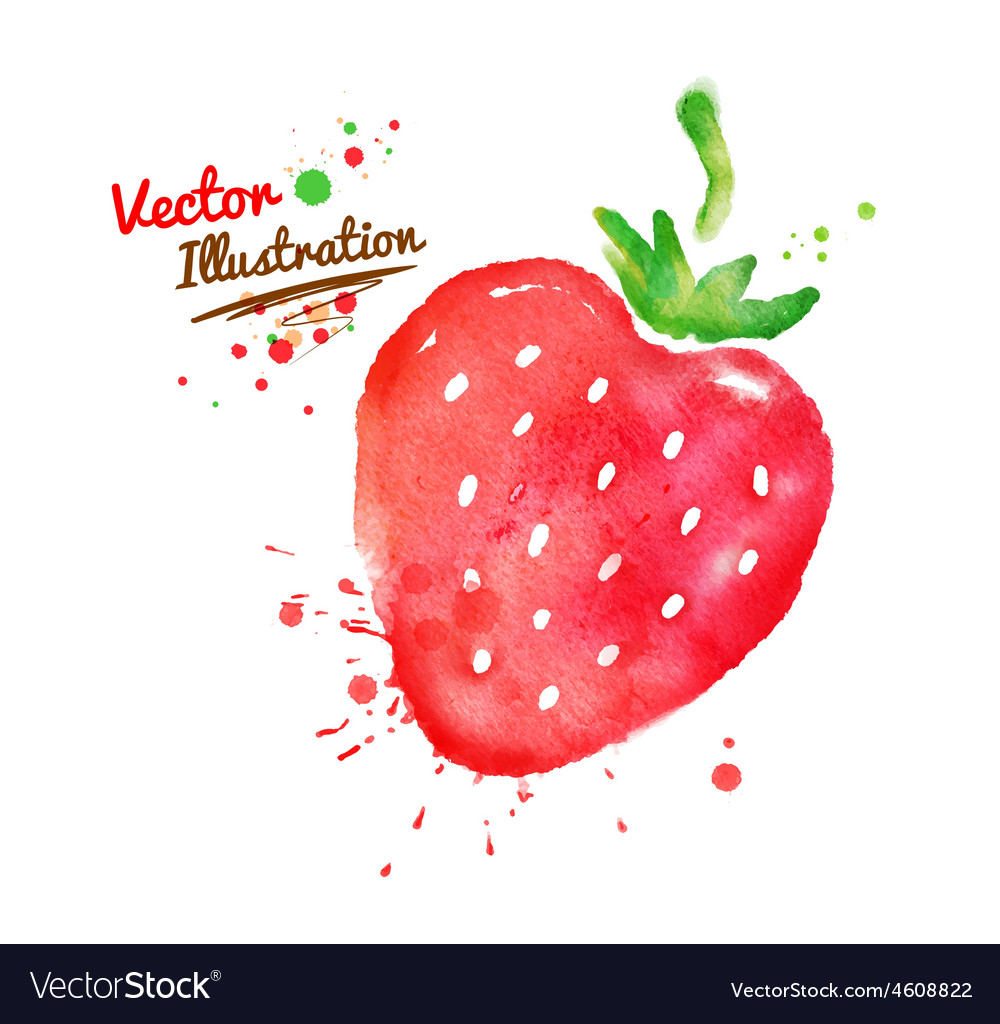Watercolor strawberry vector