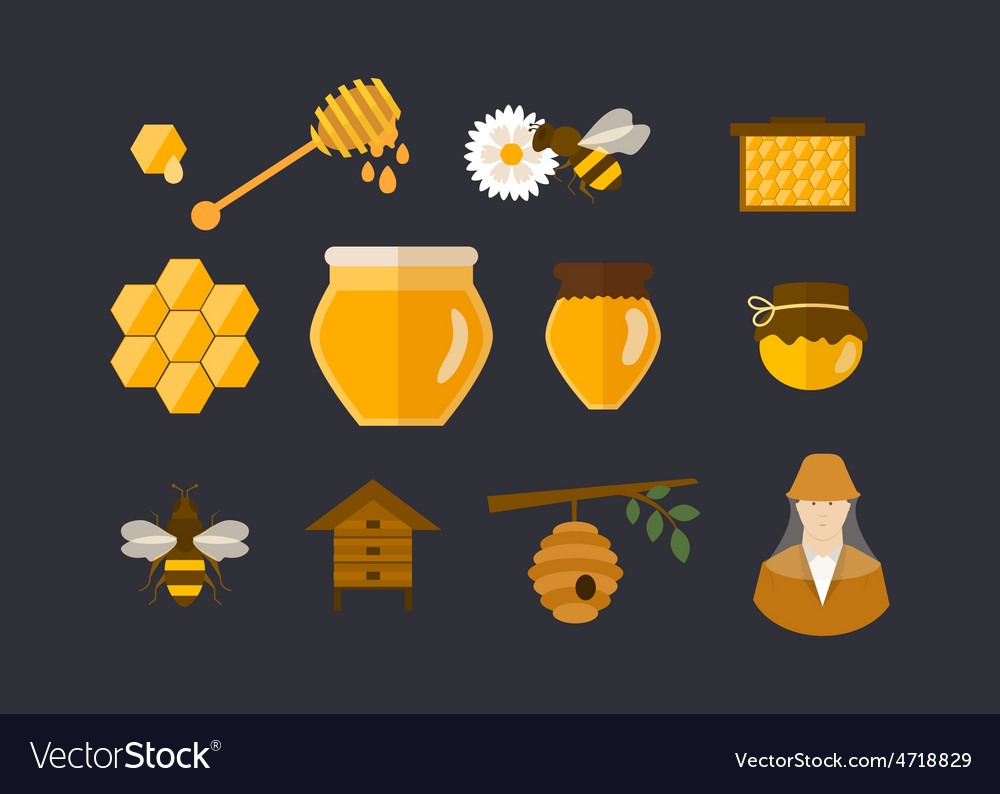 Flat design concept with icons vector