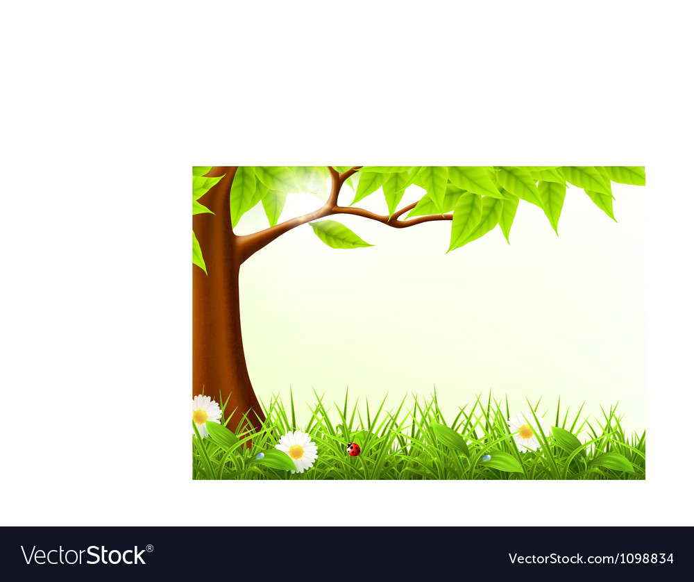 Green tree frame vector