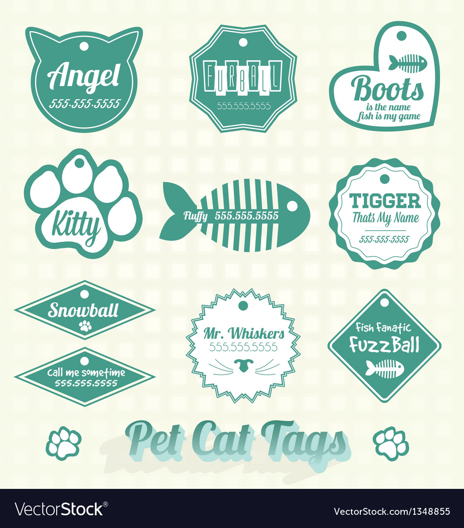 Pet cat name tags vector