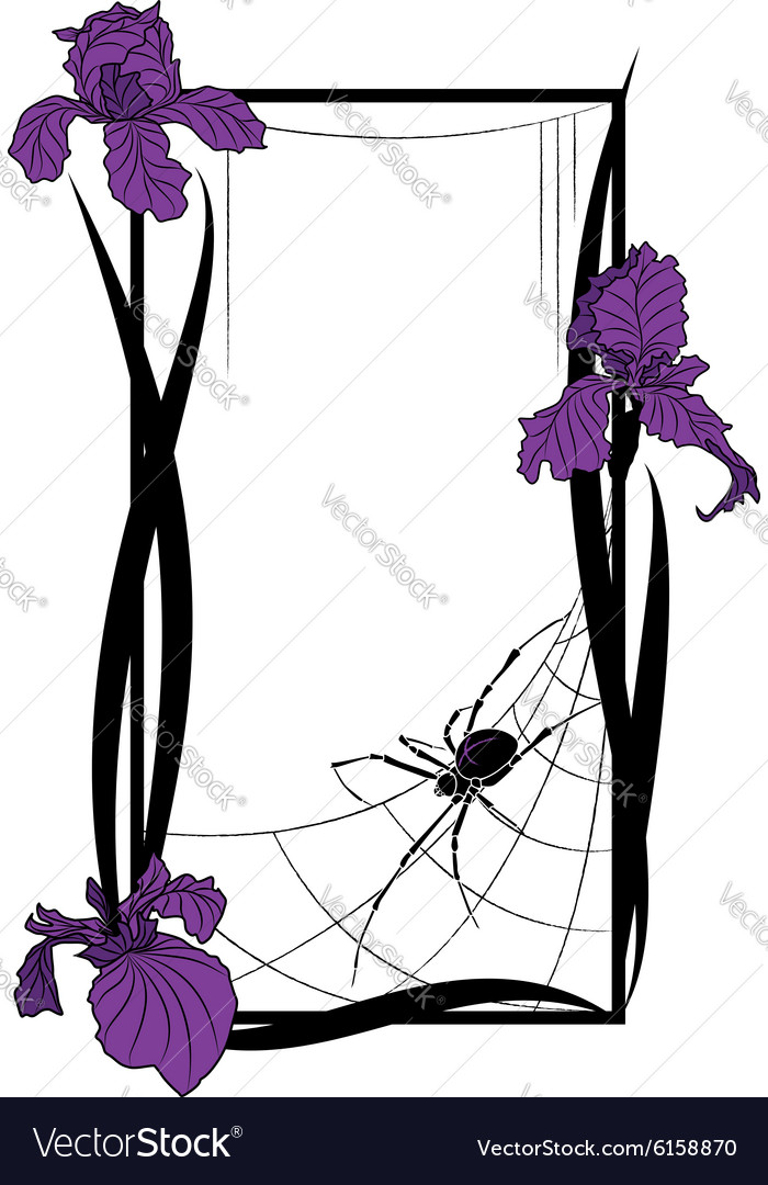 Frame with spider and irises vector