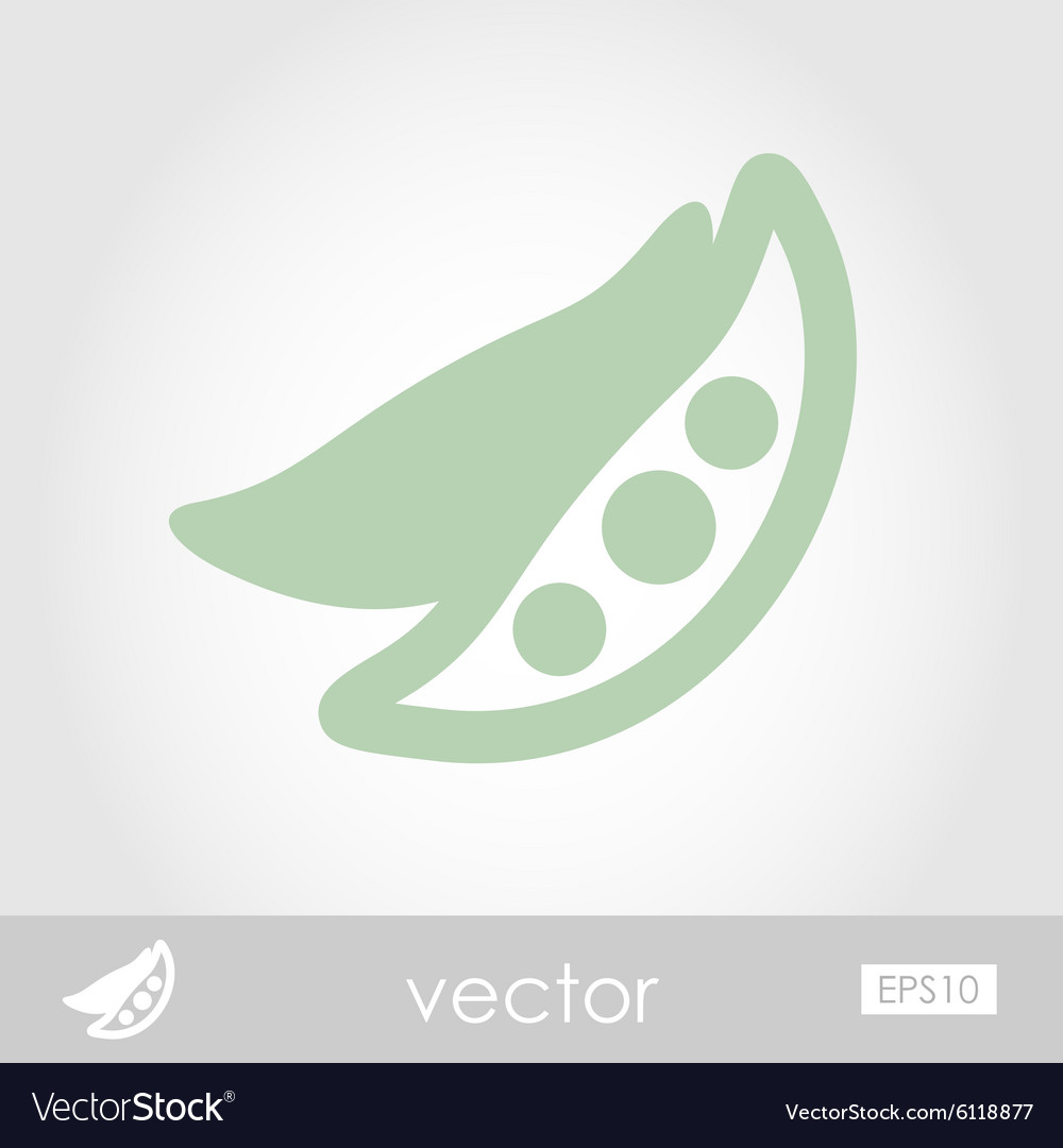 Pea icon vector