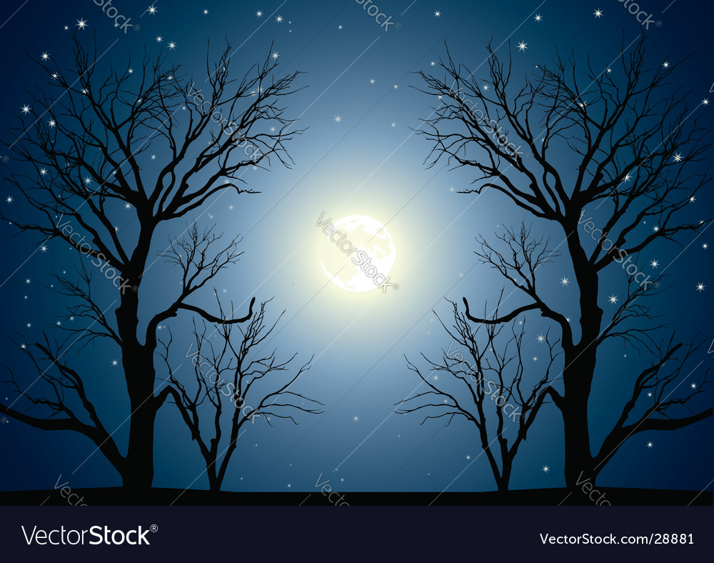 Moon trees vector