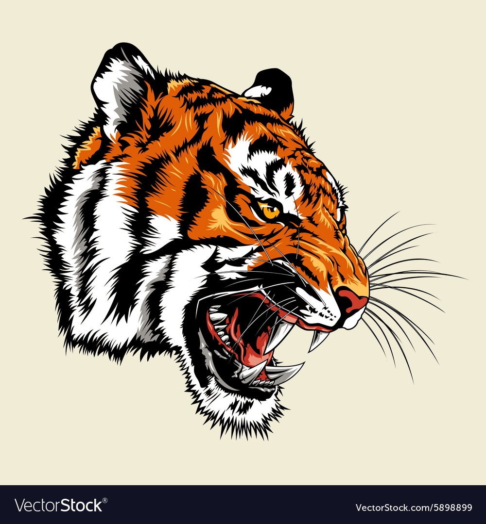 Angry tiger head vector