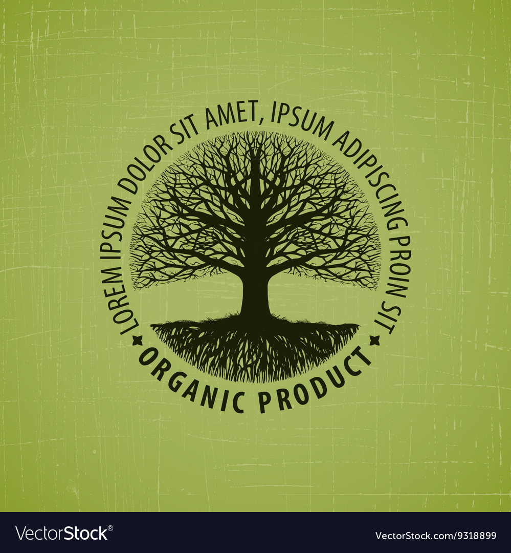 Leafless tree with roots logo organic vector