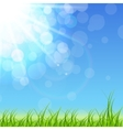 Spring Green Background vector image