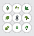 flat icon nature set of jungle oaken garden and vector image