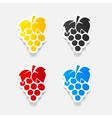 realistic design element grapes vector image