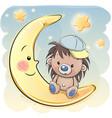 cute cartoon hedgehog on the moon vector image