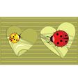 heart bugs vector image vector image