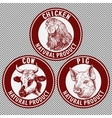 animals set cow pig chicken hand drawn vector image