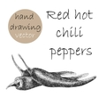 Hand Drawn red hot chili peppers Monochrome vector image