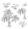 palm trees flowers vector image