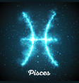 abstract zodiac sign pisces on a vector image