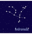 The constellation Andromeda star in the night sky vector image