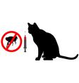 Cat flea vaccination vector image vector image
