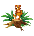 A trunk with a bear vector image