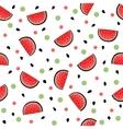 Seamless hand drawn watermelon pattern vector image