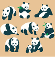 Set Of Cute Panda Bears With Different Actions Vec vector image