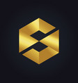 square letter s cube gold technology logo vector image