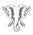 Elephant Head in Engraving style vector image