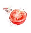 Half of tomato vector image