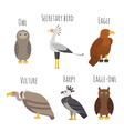set of Colorful birds of prey icons Owl vulture vector image