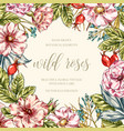 Wild roses floral frame vector image