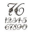 handwritten calligraphic font set of vector image