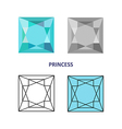 Princess gem cut vector image