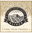 Vintage olive harvest label vector image