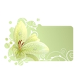 beautiful frame with white lily vector image