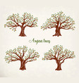 Set of argania or argan fruit trees with leaves vector image