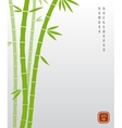 Chinese bamboo or japanese bambu asian vector image