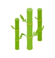 Green bamboo stems icon isometric 3d style vector image