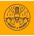 night rider vector image