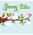 Spring timeBird on blooming tree vector image