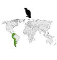 Andean Condor distribution vector image vector image