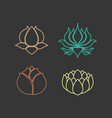 lotus logo design icon set vector image