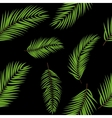 Beautifil Palm Tree Leaf Silhouette Seamless vector image