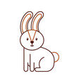 forest rabbit animal wild fauna natural vector image