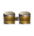 isolated bongo drum musical instrument vector image